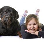 Sind Rottweiler Welpen gut mit Kindern?